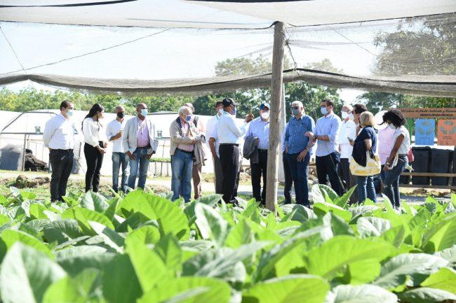 Embajadores dominicanos se adentran en tierras del tabaco como parte del plan que elevará su competencia internacional